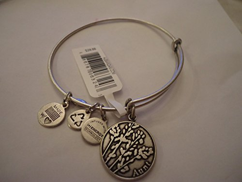 Alex and Ani Women's Because I Love You Aunt Rafaelian Gold One Size