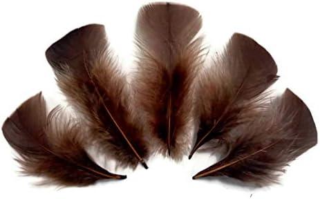 50 White B Grade Turkey Plumage T Base Feathers US Seller