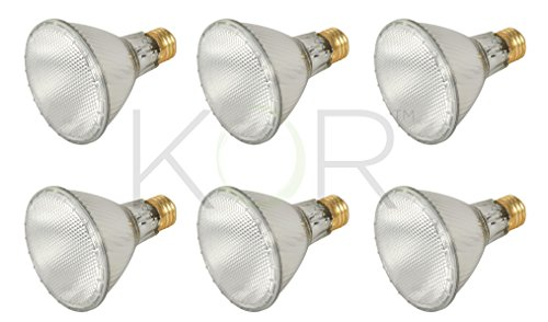 (Pack of 6) 39PAR30L/FL 120V - 39 Watt High Output (50W Replacement) PAR30 Long Neck Flood - 120 Volt Eco Halogen Light Bulbs - Dimmable - Indoor/Outdoor Use