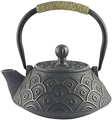 Amazoncom Hwagui Best Cast Iron Teapot With Stainless Tea