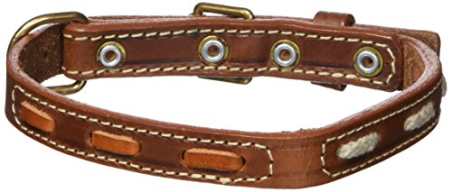 Petego La Cinopelca Leather Dog Collar with Inserts, Brown, 2/5 Inches, Fits 13 Inches to 15 Inches