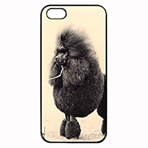 poodle Pattern Image Protective iphone 5S / iPhone 5 Case Cover Hard Plastic Case for iPhone 5 5S Kimberly Kurzendoerfer