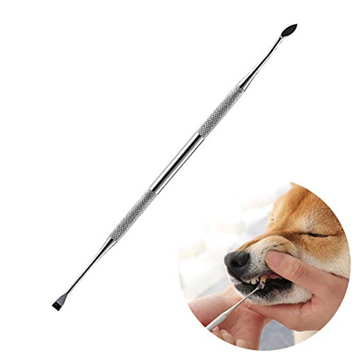 LIANZHI Tooth Scaler (Perfect for Cats and Dogs) - 6.5 Inch Double Header Stainless Steel Tarter Remover/Scraper,Dog Dental Care