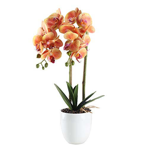 HO2NLE 21 inches Artificial Orchid Potted Plant Fake Bonsai Flower Arrangements Real Touch PU Faux Phaleanopsis Branches with White Ceramics Pot Home Office Bedroom Table Centerpieces Decor Orange (Arrangements Large Orchid)