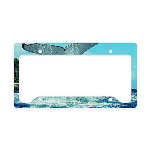 - CafePress Humpback Whale's Tail Aluminum License Plate Frame, License Tag Holder