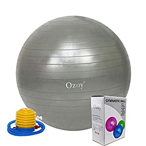 Exercise Heavy Duty Gym Ball India 2020 | Non-Slip Stability Ball