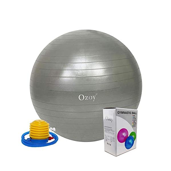 Exercise Heavy Duty Gym Ball