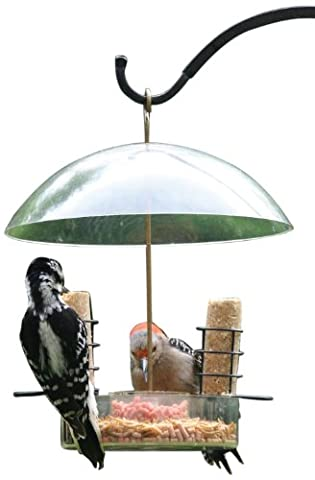 Birds Choice Supper Dome Mealworm/Seed Feeder - Birds Choice Supper Dome