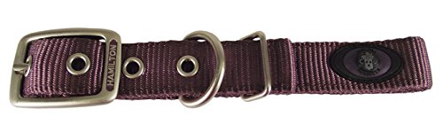 Hamilton Double Thick Nylon Deluxe Dog Collar with Brushed Hardware Finish, 1-Inch by 22-Inch, Plum