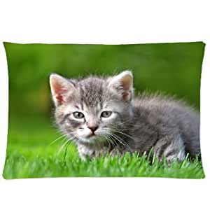 CCTUSGSH Cute Animal Series Cotton Throw Pillow Case Decorative Cushion Cover 16 X 24 Inches One Side