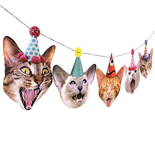 Halloween Cat Face Pics (Birthday Cats Garland, party banner decoration, Made in USA, Best)