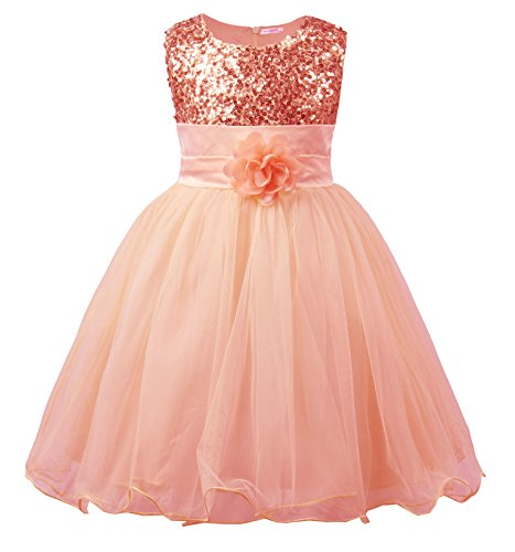 JerrisApparel Little Girls' Sequin Mesh Flower Ball Gown Party Dress Tulle Prom (5, -