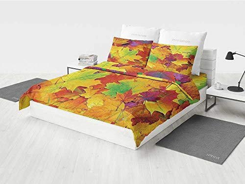 Bamboo Maple Bed - KaithLong Fall Decorations Boys Bedding Set Different Colored Vibrant Many Autumn Maple Leaves November Scene Photo Printing Four Pieces of Bedding Set Yellow Purple