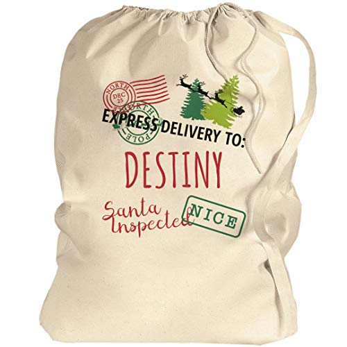 Destiny Kids Christmas Santa Delivery Bag: Canvas Laundry Bag