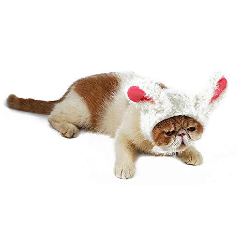 AUOKER Cat/Dog Headgear, Cute Costume Cosplay Lion Panda Rabbit Wig Dress Up with Ears Hats for Dogs Cats Puppies Kittens, Pet Charming Accessories for Halloween Christmas Holiday Party]()