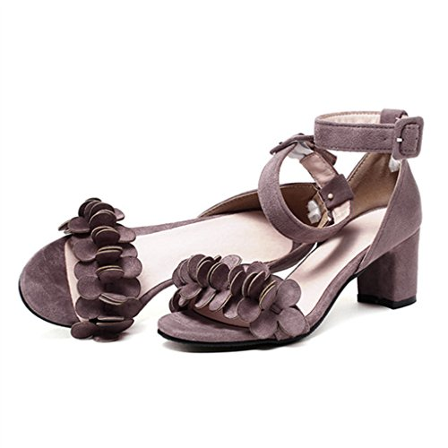 Dovaly Woman Sandals Buckle Elegant Square Thick Buckle Heels Simple Big Size High Heels