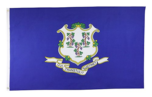 Shop72 US Connecticut State Flags - Connecticut Flag - 3x5' Flag From Sturdy 100D Polyester - Canvas Header Brass Grommets Double Stitched From Wind S (Connecticut State Flag)