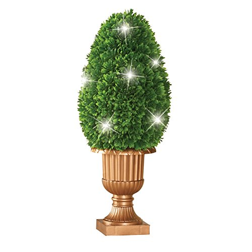 Outdoor Lighted Boxwood Topiary - 4