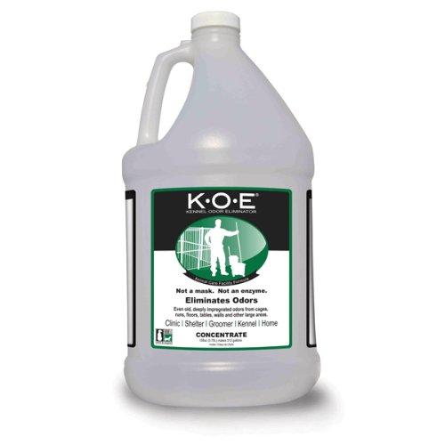 K-O-E Kennel Odor Mild Ginger Eliminator, 1-Gallon by Koe