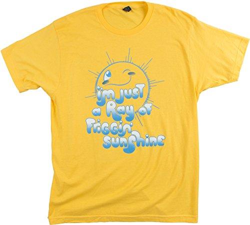 Ann Arbor T-shirt Co. I'm a Ray Of Friggin' Sunshine | Funny Sarcasm Sarcastic Humor Fun Silly T-Shirt-(Adult,L) (Yellow T-shirt Sunshine)