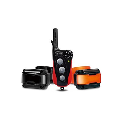 iQ Plus Remote Trainer by Dogtra (2 Dog) by Dogtra