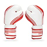Sanabul Core Boxing Gloves