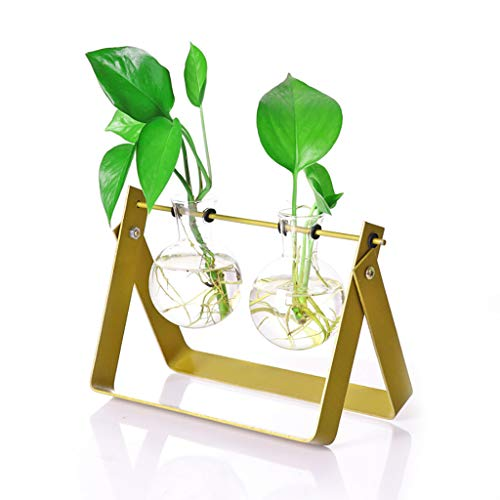 (Ivolador Desktop Plant Terrarium Stand Modern Tabletop Glass Planter Flower Bulb Vase with Metal Swivel Holder (Golden))