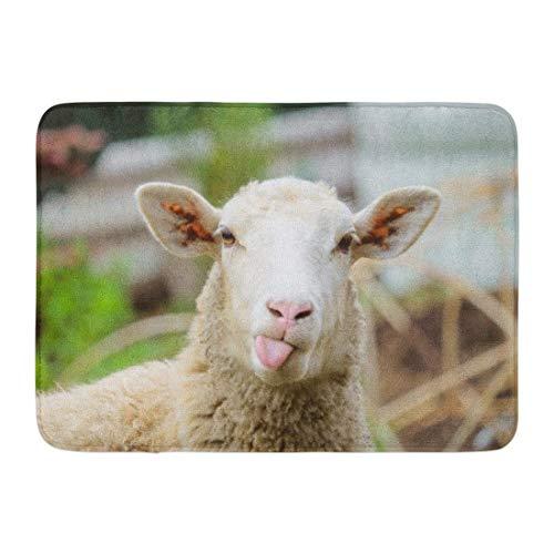 Doormats Bath Rugs Outdoor/Indoor Door Mat Animal Funny Sheep Portrait of Showing Tongue Lamb Livestock Face Farm Bathroom Decor Rug 16