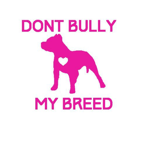 dont-bully-my-breed-size-55-color-hot-pink-windows-walls-bumpers-laptop-lockers-etc