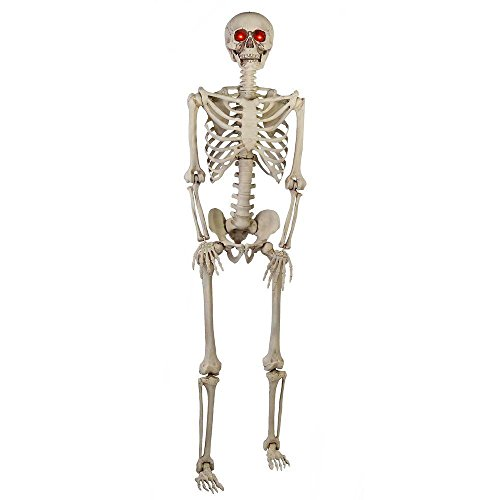 5 ft. Poseable Skeleton with LED ()