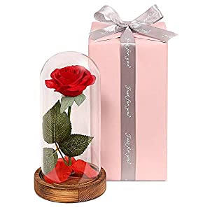 Beauty and the Beast Real Rose,Handmade Preserved Fresh Real Rose Flower with Fallen Petals in a Glass,with Exquisite Gift Box for Anniversary Mother Day Holiday Birthday Party 81