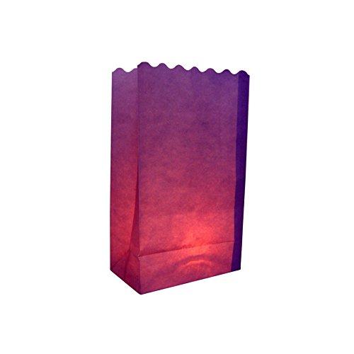 Quasimoon Purple Paper Luminaries / Luminary Lantern Bags Path Lighting (10 PACK) by PaperLanternStore by Quasimoon