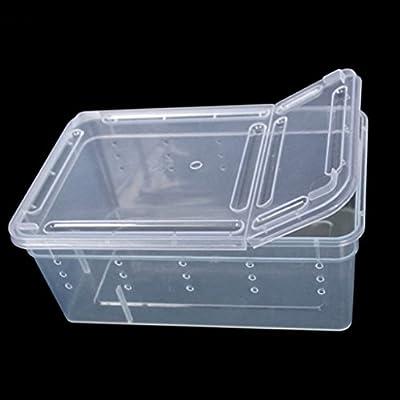 junyeYJY - Caja de plástico Transparente para Alimentos de ...