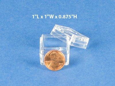 1 Inch Bug Boxes with Magnifying Lid (Pack of 10 Boxes)
