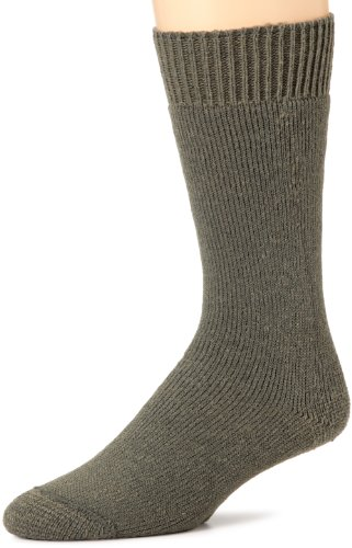 (Wigwam Mens Combat Boot 2 Pack Socks,Foliage green,Large/shoe Size:Men's 9-12,Women's 10-13)