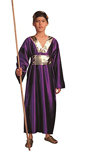 RG Costumes Wiseman Costume, Child Medium,