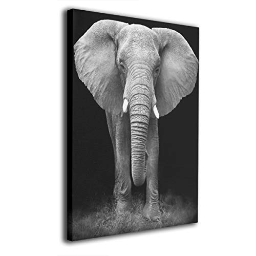 - Hobson Reginald Canvas Wall Art Prints Black and White Glass Splashback Elephant -Picture Paintings Modern Decorative Giclee Artwork Wall Decor-Wood Frame Gallery Stretched 16