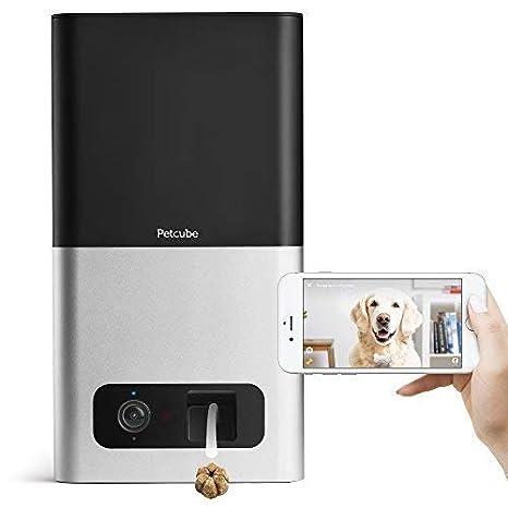 Petcube Bites Cámara Wi-Fi para Mascotas con dispensador de Galletas. Cámara de Video HD 1080p para monitoreo de Mascotas. Audio bidireccional, visión ...
