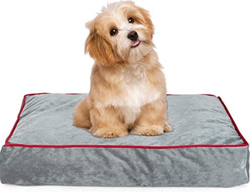 Bed 180 Breed.Memory Foam Pet Bed Ideal For Aging Dogs Eases Pain Of Arthritis Hip Dysplasia Removable Machine Washable Cover Waterproof 180 Gsm Non Slip Cover