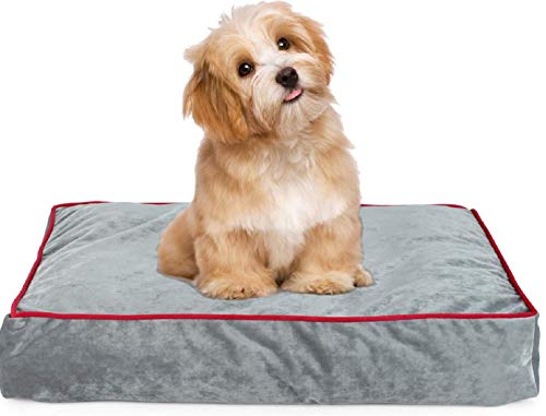 Memory Foam Pet Bed Ideal for Aging Dogs Eases Pain of Arthritis & Hip Dysplasia Removable Machine Washable Cover, Waterproof 180 GSM Non-Slip Cover, for Home, Car, Outdoors, Grey, 24Lx 18W X4H in.