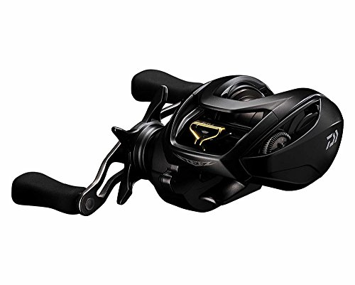 Daiwa Steez STEEZSVTW1016SV-H Sv Tw Bcast Reel for sale  Delivered anywhere in USA