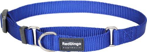 Red Dingo Martingale Collar - Small - Blue