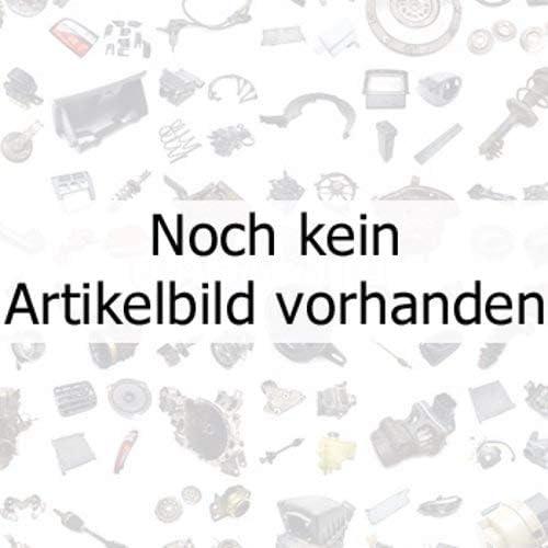 JP Group Bremsschlauch Bremsleitung Bremsen 3861600200