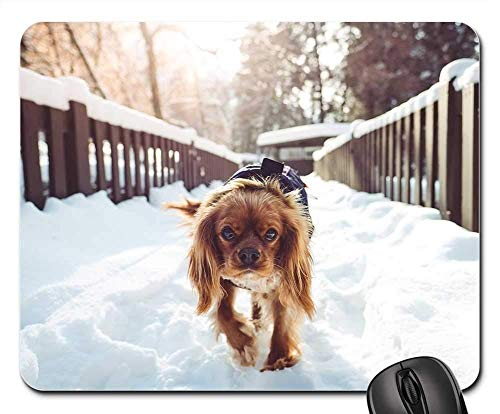 Gaming Mouse Pads,Mouse mat,Animal Dog Pet Friend