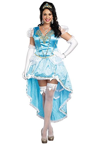 Dreamgirl Women's Plus-Size Fairytale Ball Gown Costume, Blue, -