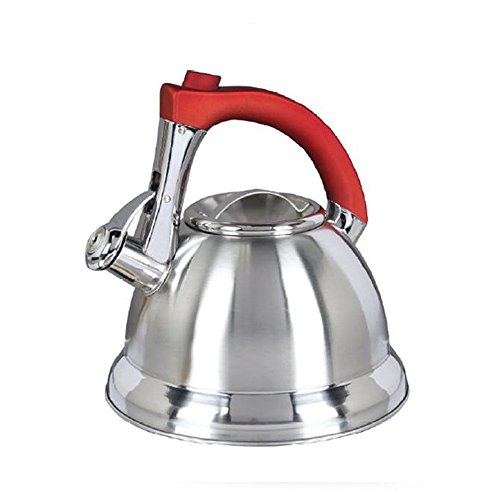 Mr. Coffee Collinsbrook Stainless Steel Whistling Tea Kettle