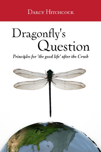 Dragonfly's Question: Principles for the 'Good Life' after the Crash