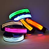 JFS Led Dog Collar - Rechargeable USB Pet Dog Cat Collar Wide Nylon Lights LED Lightfor Your Pet to Feel Comfortable- and Easy to Clean - M