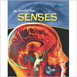 Book Senses (My Amazing Body)