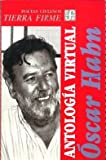img - for Antolog a virtual (Coleccion Ciencias Sociales. Historia) (Spanish Edition) book / textbook / text book